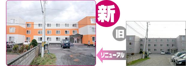 renew_riva-hanasaki